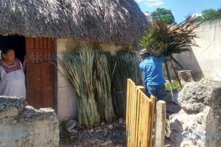 Proyecto redondo para conservar casas de huano en comunidad yucateca