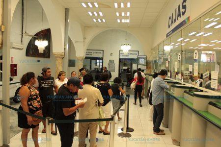 Japay amplía el plazo para participar en su sorteo de clientes cumplidores