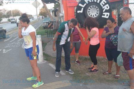 Perros callejeros atacan a jovencita en ciclopista de Kanasín