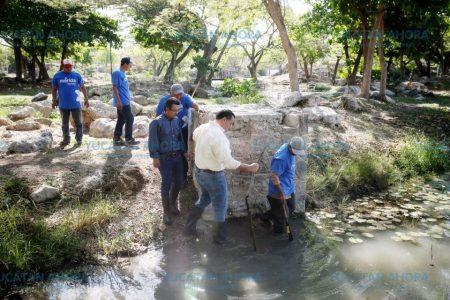 Hacen más hondo el lago del Parque Ecológico del Poniente