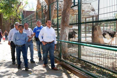 Área invisible pero necesaria, en el parque zoológico del Centenario