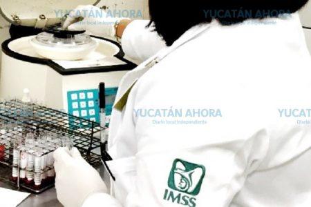 Yucatán, en los primeros lugares nacionales de VIH y sífilis: IMSS