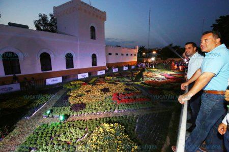 ¿Mucho calor? Plan para arborizar estacionamientos en Mérida