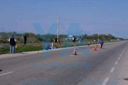Muere atropellada en la carretera Mérida-Motul