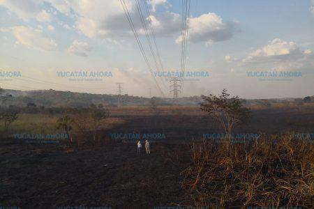 Asegura CFE que otra vez la quema de caña causó apagón peninsular