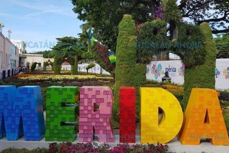 Calle de Mérida tendrá nombre de premio nobel de la paz mexicano