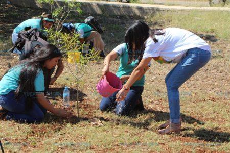 Celebran en el sur de Yucatán el Día de la Tierra
