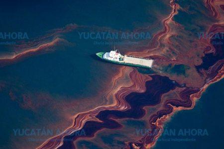 En 15 años se verán en Yucatán efectos de desastre ecológico de 2010