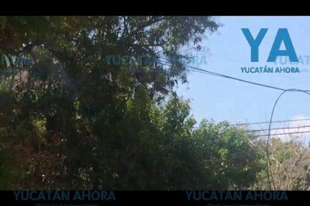 Por lo antiguo, se quema un cable de la CFE en la avenida Colón