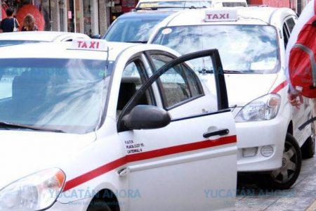 ¿Quién se quedó con las placas para taxis?