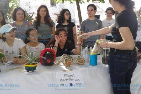 Con gran éxito realizan en Mérida el trueque 'Siembra vida, regala amor'