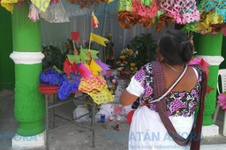 Las milpas mayas, listas para recibir el agua benigna