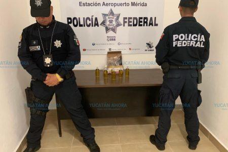 Aseguran aceite de marihuana en el aeropuerto gracias a oficiales caninos