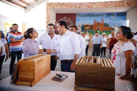 Yucatán empieza a producir sus propias abejas reinas