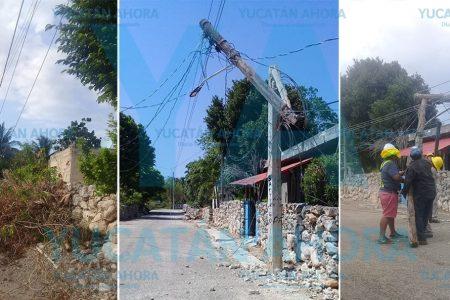 Cae árbol sobre unos cables y derriba un poste en tres partes