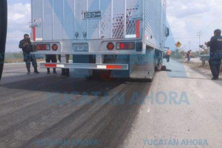 Tragedia en la carretera Mérida-Progreso