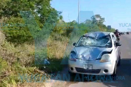 Fatal atropellamiento de un ciclista en la Mérida-Progreso