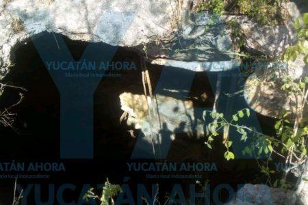 Buzo meridano se descompresiona en un cenote de Tekit