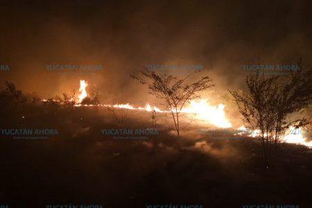 Controlan incendio de gran magnitud cerca de Ticul