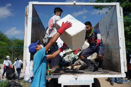 Yucatecos se unen al #BasuraChallenge y recogen 15 toneladas de basura