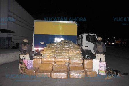 Otros ingeniosos: escondían droga en zapatos de Ticul