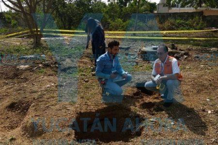 Se 'hunden' tres niños en escuela meridana