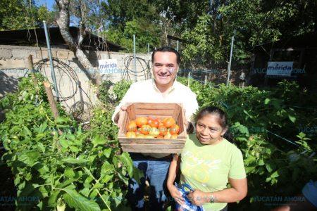 Impulsan desarrollo integral también en la zona rural de Mérida
