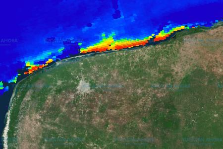 Gigantesca mancha de sargazo corre paralela a la costa de Yucatán