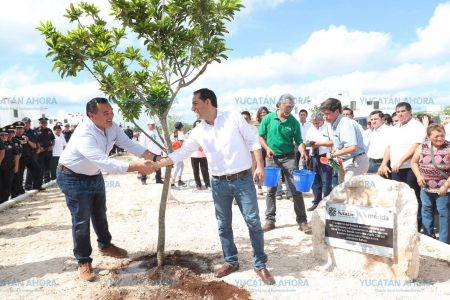 Que la siembra de árboles no sea una moda por el calor: Mauricio Vila