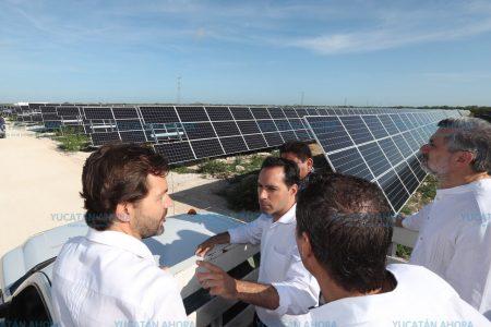 Mauricio Vila inaugura planta de energía solar en San Ignacio