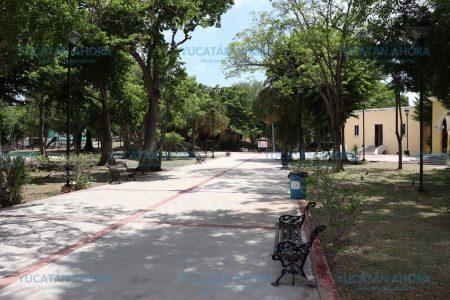 Comunidad artística se suma a la reforestación de Mérida