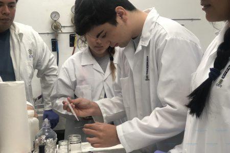 Ya viene la Tercera Semana de Ciencia para Jóvenes Talento CICY