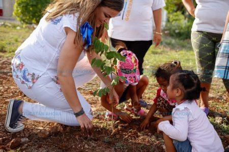 Buena respuesta a reto para que Mérida recupere su techo verde