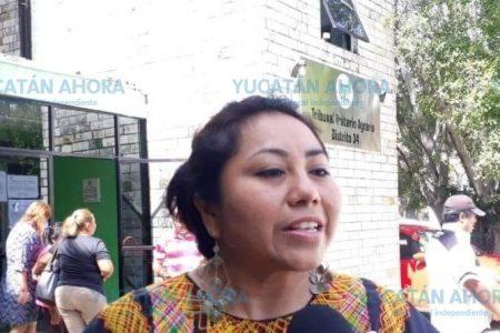 A un año de suspendida una calera, hasta venado ya hay en Chocholá