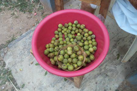 La huaya, más que un ingrediente del suculento 'xec'