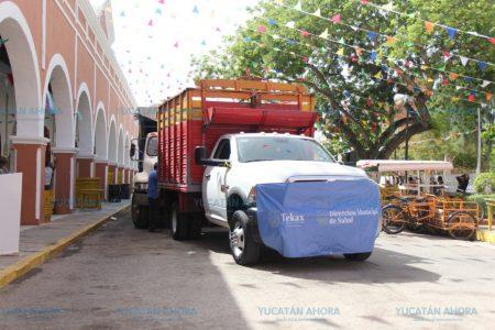 Aniquilan 'maternidades' de moscos en el sur de Yucatán