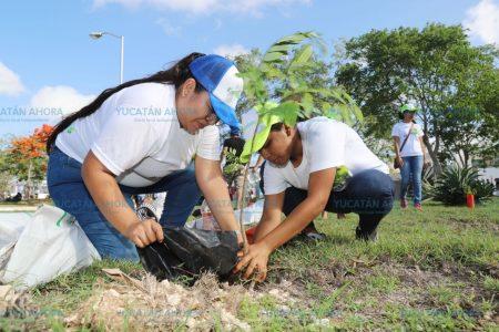 Más ciudadanos se suman a las jornadas de reforestación