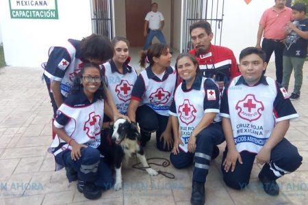 Emotivo retiro de 'Tobi', un rescatista canino de la Cruz Roja