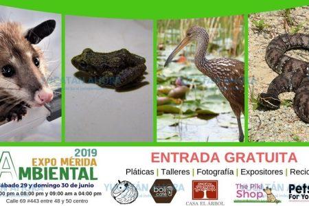 Próxima Expo Mérida Ambiental: 29 y 30 de junio