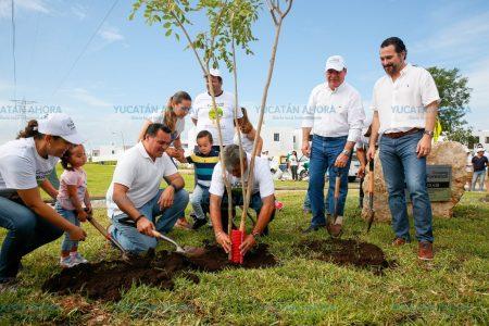 Mérida ya luce con miles de especies nativas plantadas y va por más