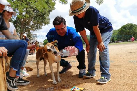 Turistas 'alimentaron' la presencia de los perritos de Kukulcán