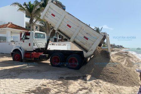 Realizan acciones concretas para la recuperación de la costa yucateca