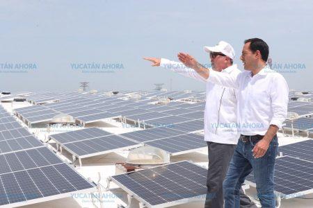 Empresas yucatecas le apuestan a las energías limpias