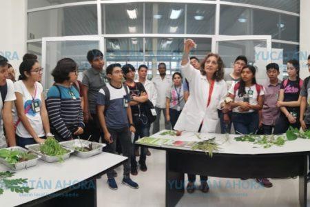 Inauguran Tercera Semana de Ciencia para Jóvenes- Talento CICY 2019