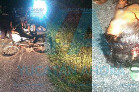 Motociclista y ciclista lesionados al chocar en angosta carretera