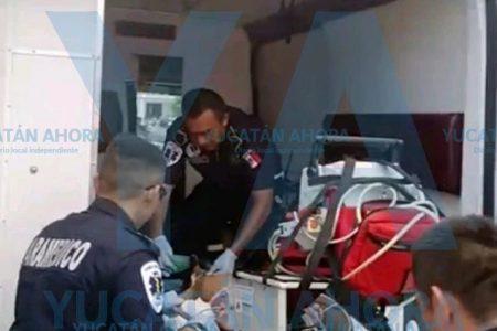 Trágico accidente vacacional: niña de año y medio cae a una piscina