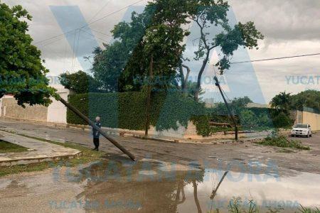 Otra lluvia con saldo desastroso en Mérida