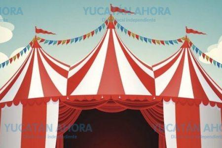 Decepcionado de un circo que 'no cumple lo que ofrece'