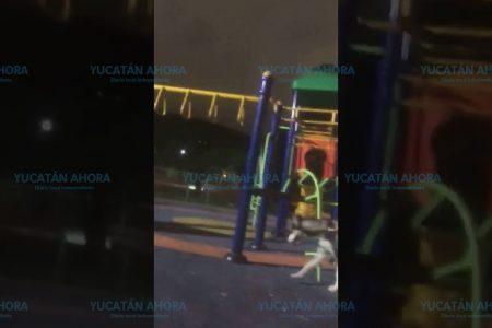 Denuncian entrenamiento de perros en área infantil de un parque