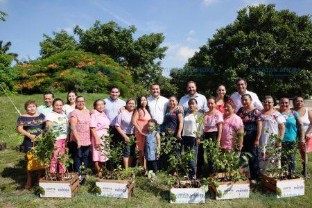 Consejos de Participación Ciudadana se suman a la reforestación